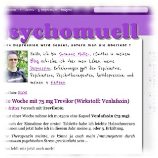 Screenshot PsychoMUELL.