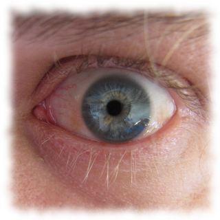 Das Auge des Ulf.