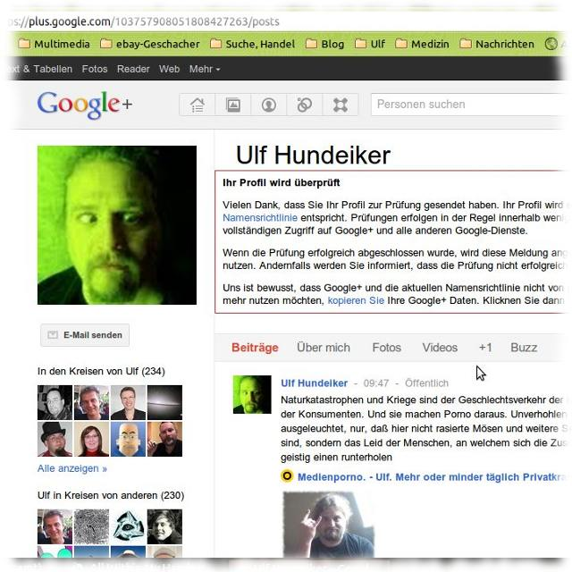 Screenshot von Ulfs Google Plus-Profil.