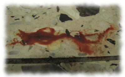 Blutfleck vor der Wohnungstür.