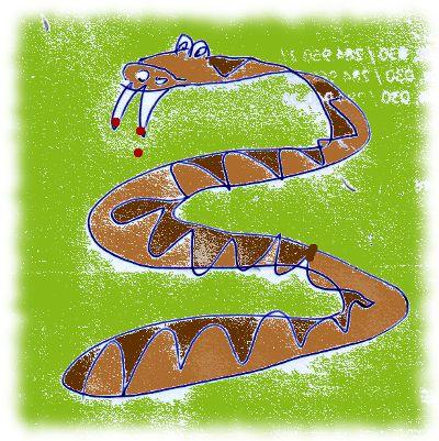 Misslungene Zeichnung einer Kreuzotter.