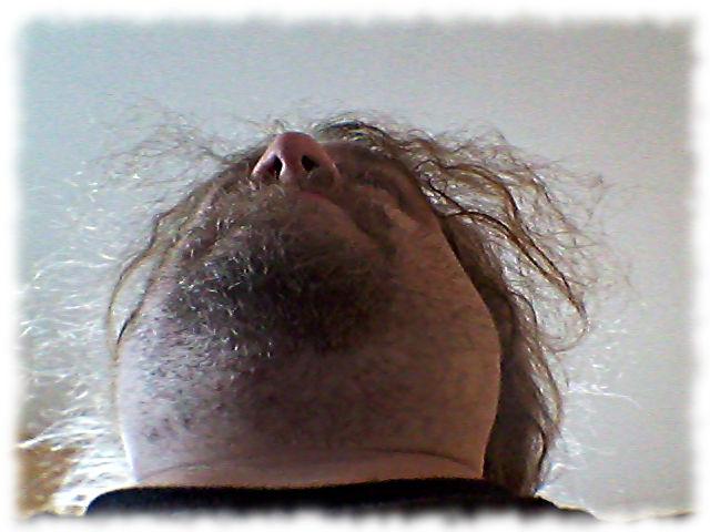 Bild vom Bart von unten.