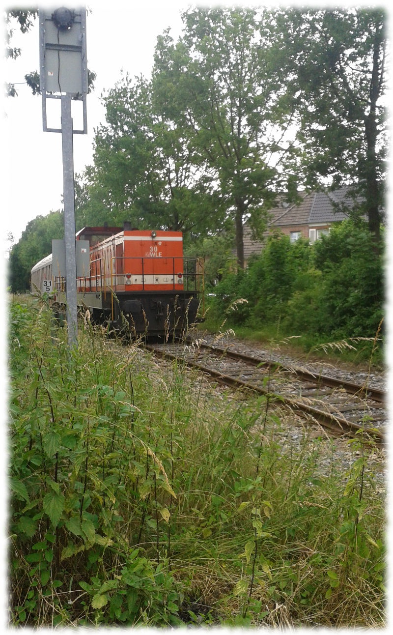 Diesellokomotive der Wesfälischen Landeseisenbahn beim Rangieren.