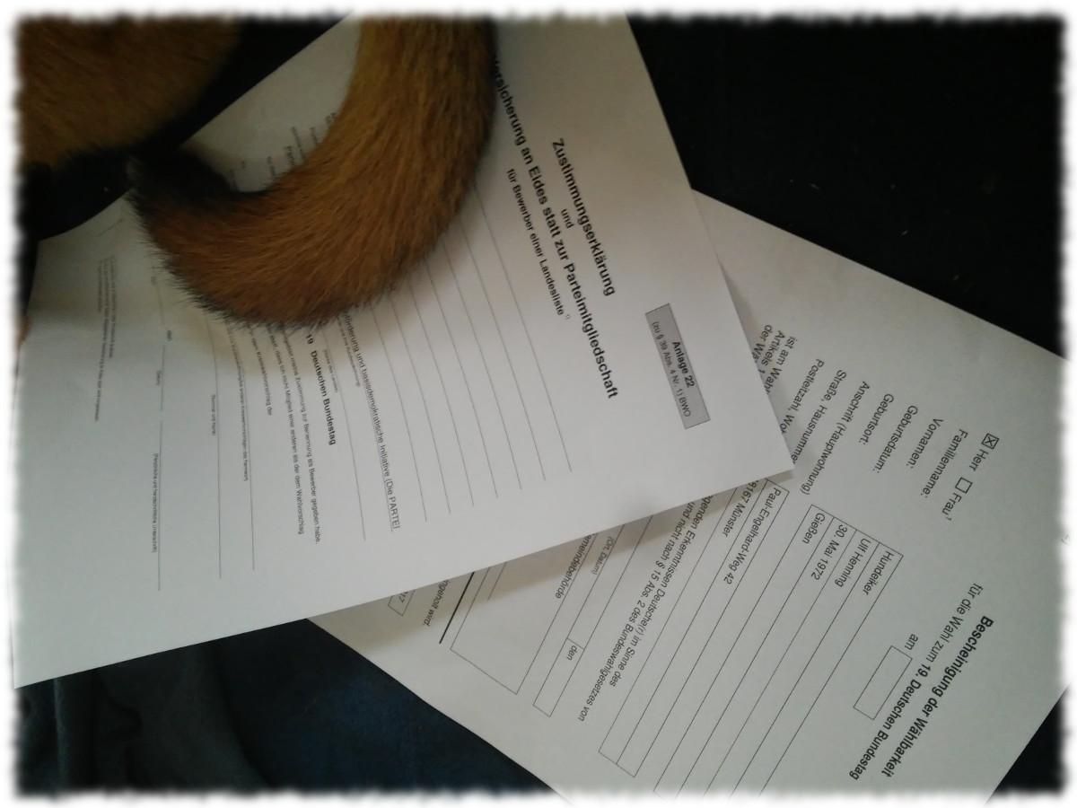 Formulare für die Zustimmungserklärung und PARTEImitgliedschaft sowie für die Wählbarkeit, dekoriert mit Brunos Schwanz.