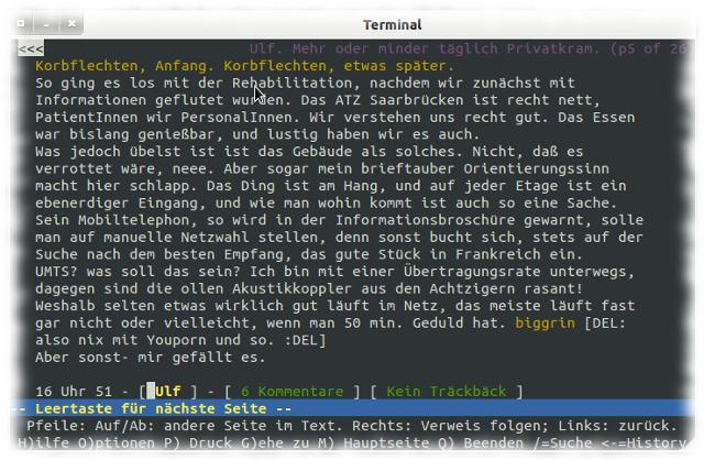 Screenshot: Ulfs Blog mit Lynx.