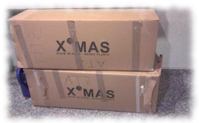 K�nstliche Tanneb�ume in Kartons verpackt.